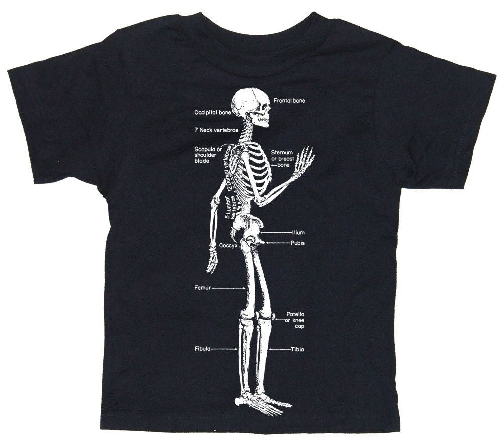 Skeleton Diagram Biology Screen Print Baby or Toddler Jet Black T-Shirt