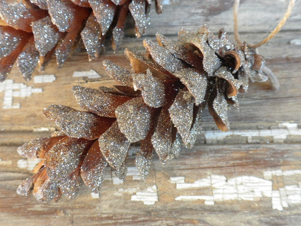 Pinecone Holiday Ornament dusted in glitter