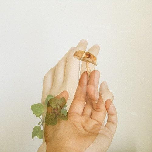 Sprout print (Shi-gano)
