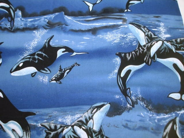 Killer whale fabric fabric by the yard by vargasvalleyvintage for Whale fabric