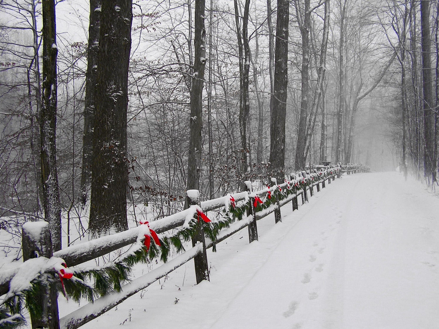 Deck the Trail 8x10 Christmas Winter Snow Scene Photograph