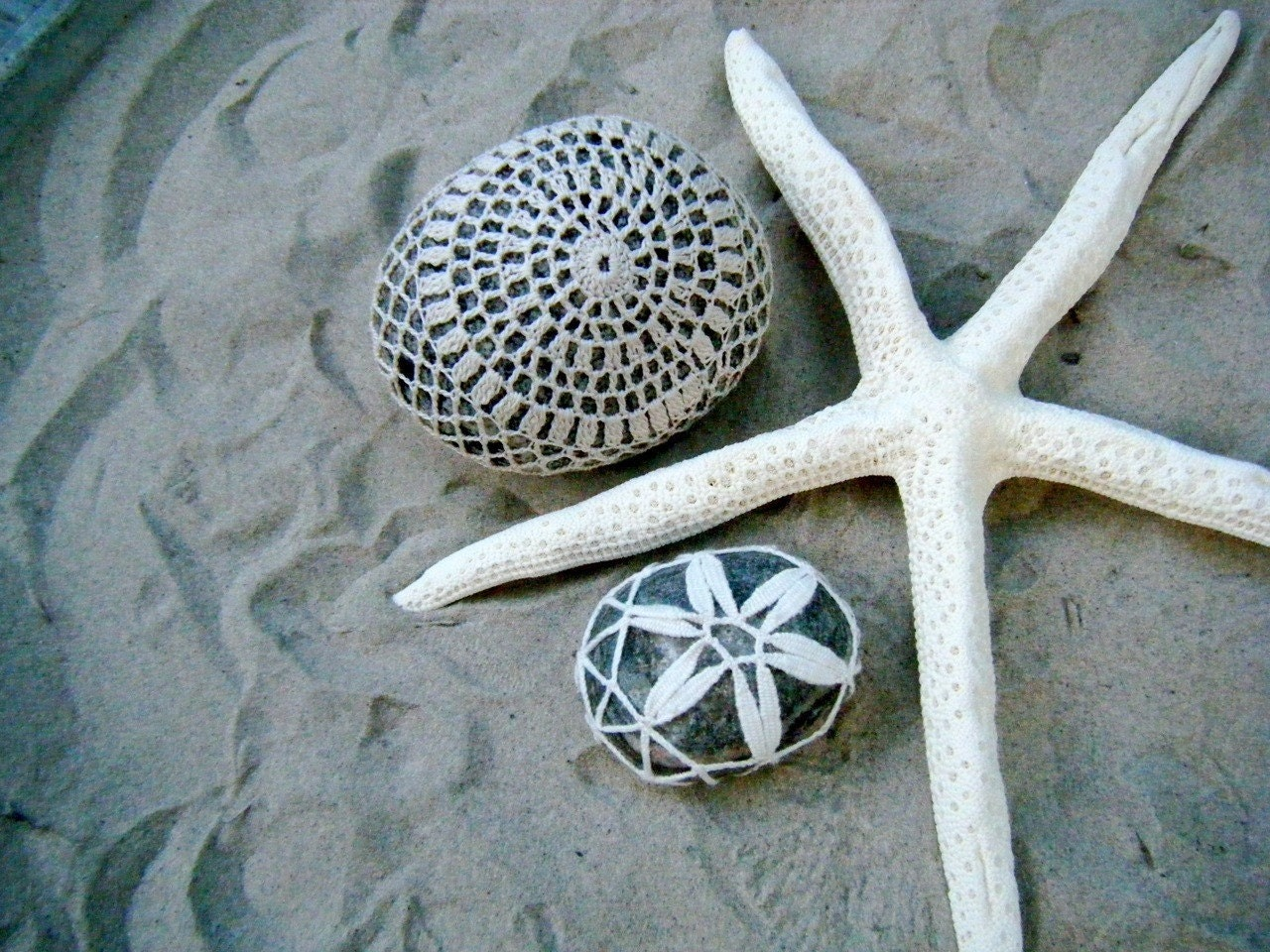 two stones and a starfish