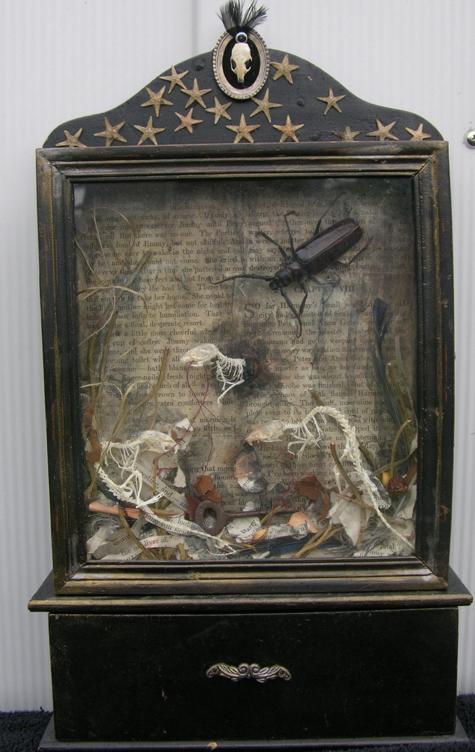 Victorian Style Shadowbox-'A Seaside Motel'- Mouse Skeletons, Starfish, Vintage Paper