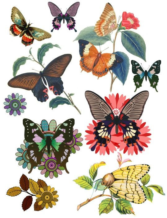 Vintage Butterflies And Flowers Clipart