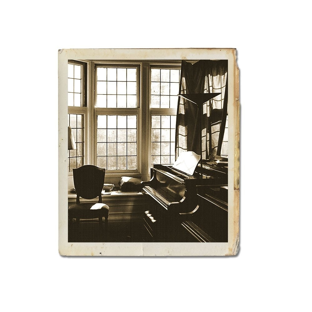Piano Song  Fine Art Photograph By  Catherine Jeltes Of galleryzooart On Etsy