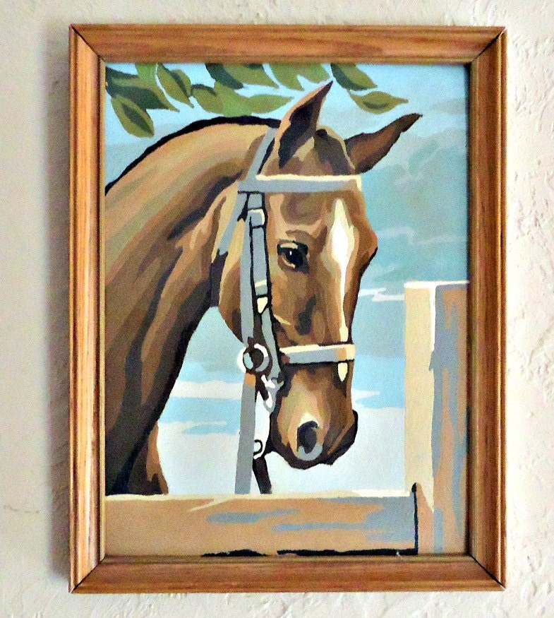 Paint By Number Painting Framed Horse Picture Art Equestrian PBN