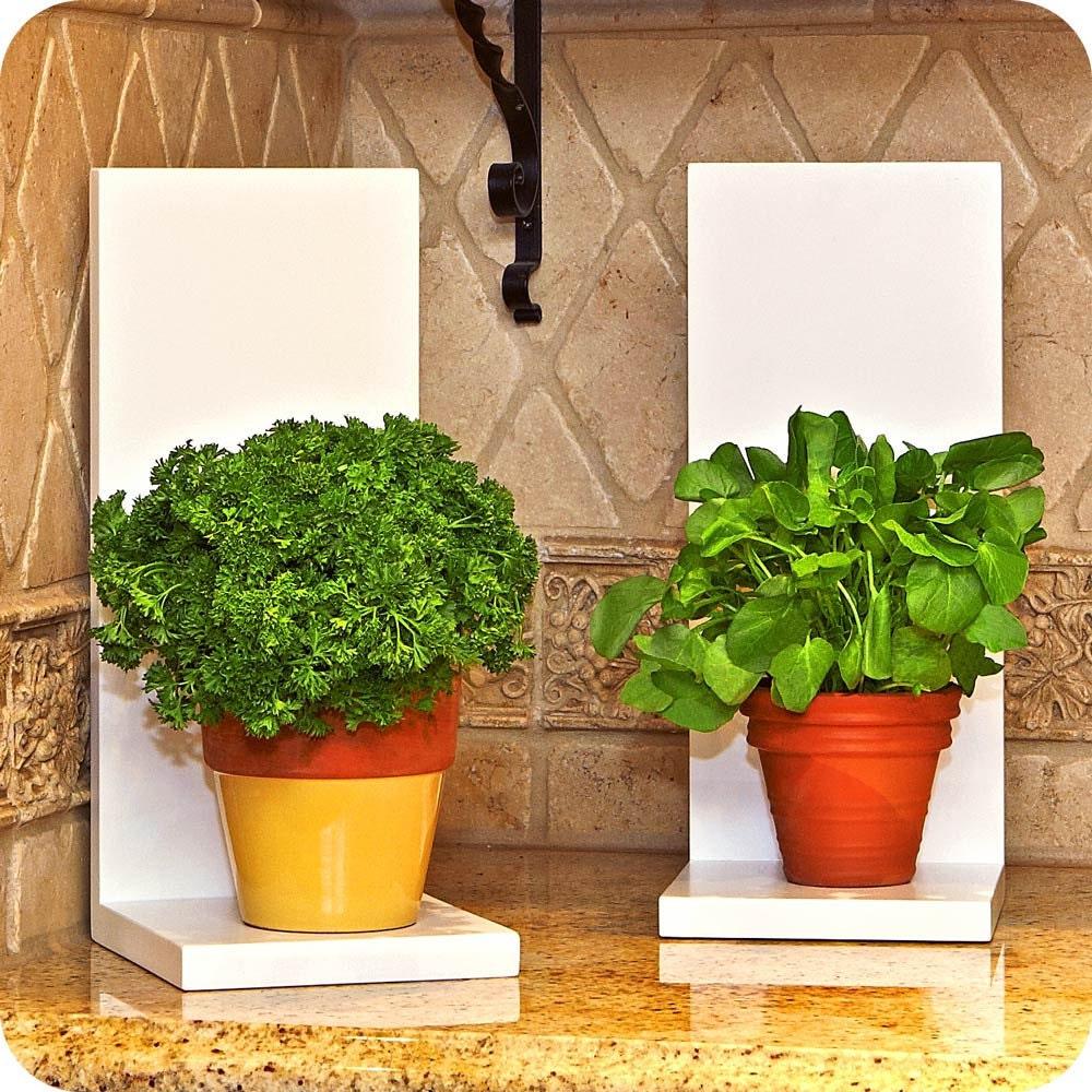 Indoor gardening gift ideas photograph indoor plant ho for Indoor plant gift ideas
