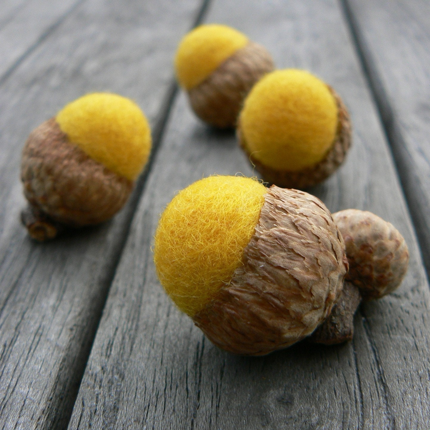 Felted Acorns - Golden Yellow (8) - Waldorf Inspired.
