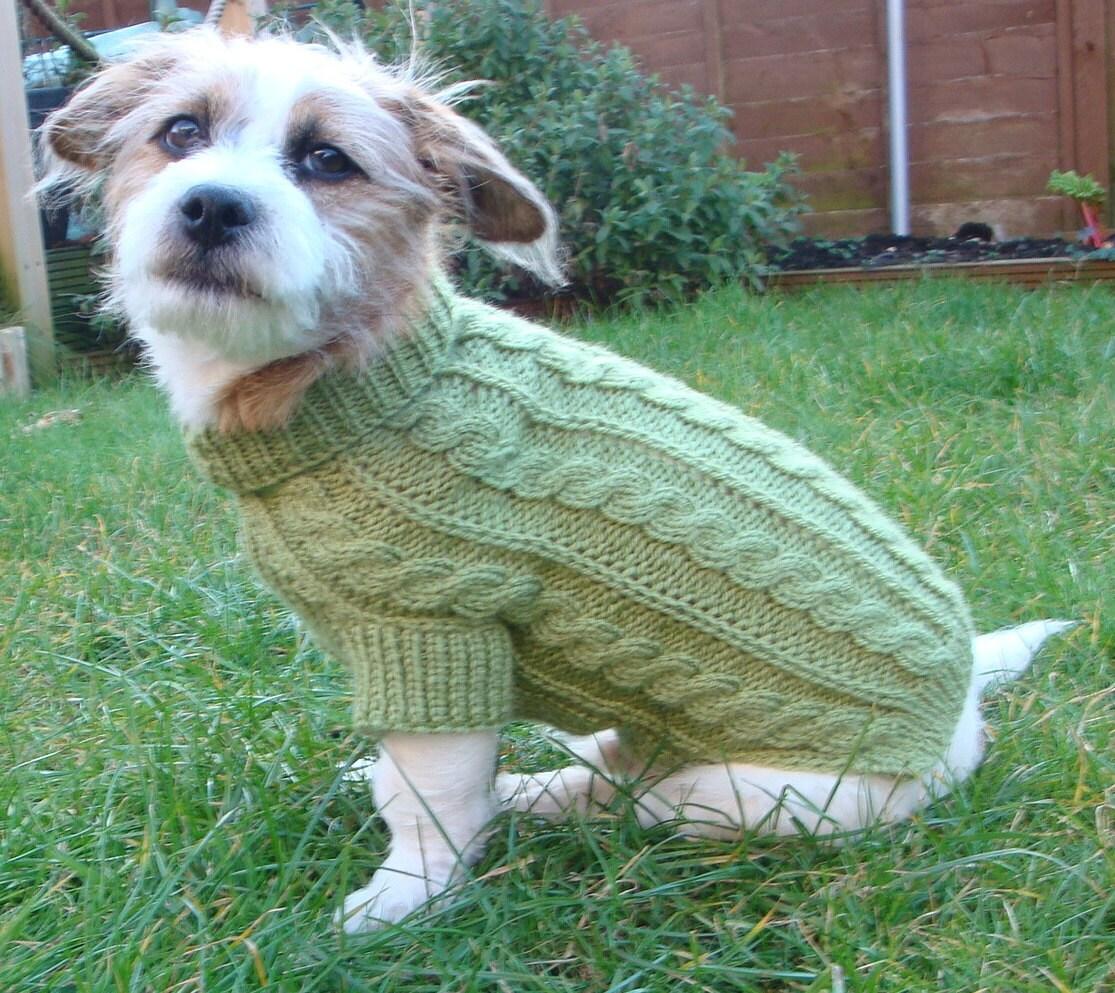 Dog Sweater That Looks Like A Sheep