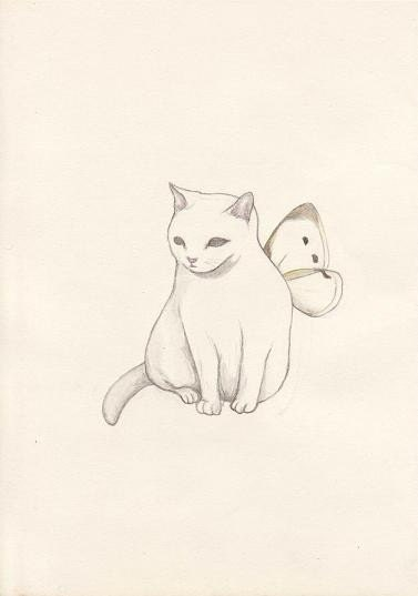 A white cat has wings - postcard