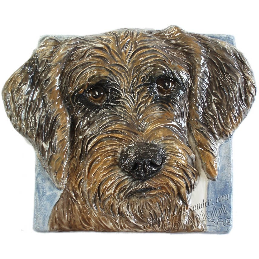 Goldendoodle Dog Kennels Southern California | Dog Breeds Picture