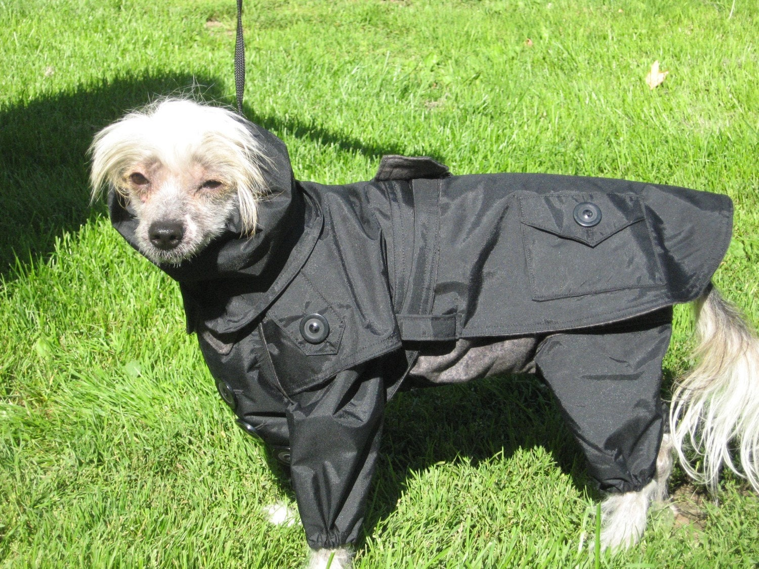 Polar fleece dog coats -PASSION PETS