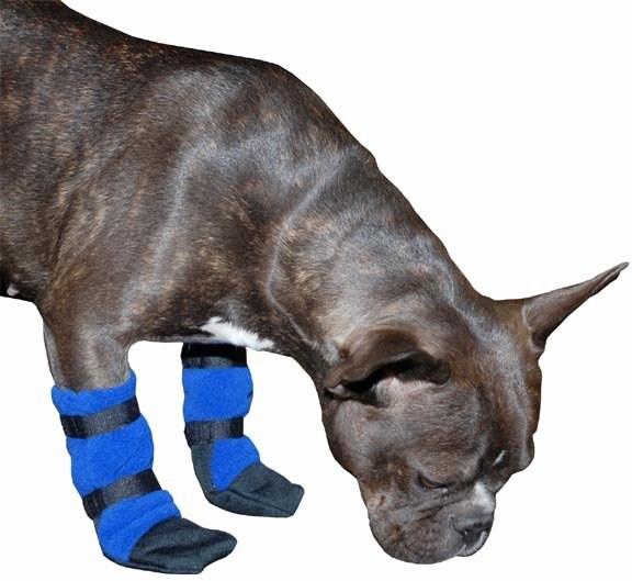 FRENCH BULLDOG Dog Booties