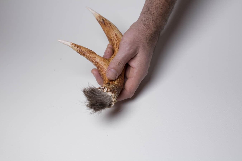 Deer antler shaker/rattle