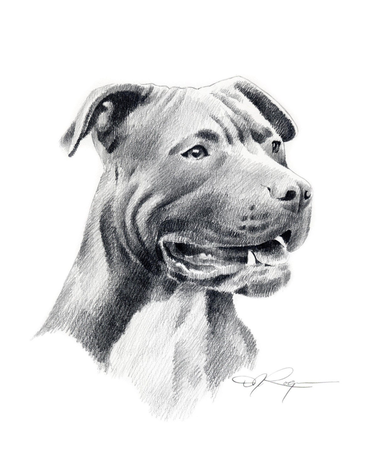 Pitbull dog drawings in pencil - photo#9