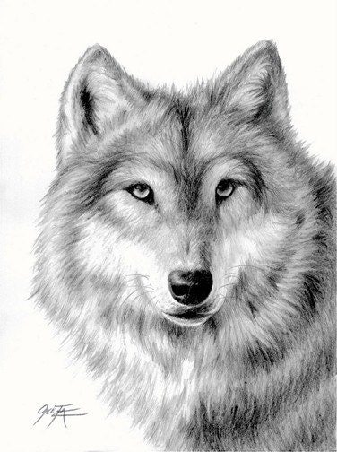 Items similar to Wolf,...