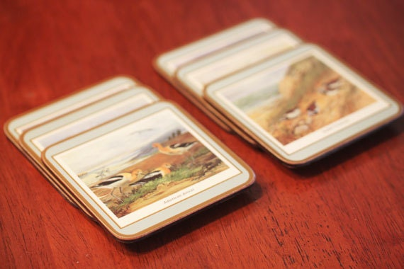 Vintage Bird Picture Coasters With Cork Backing BIRD WATCHING - CoolBoyVintage