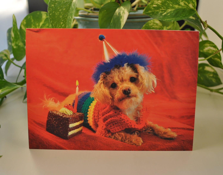 from Maverick gay online birthday cards