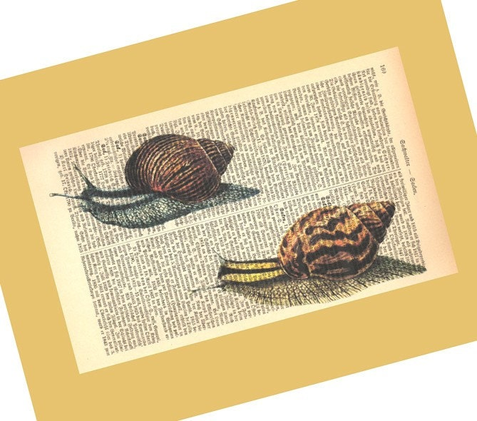 Snail Race Illustration Print on Antique 1896 Dictionary Book Page  FREE WORLDWIDE SHIPPING