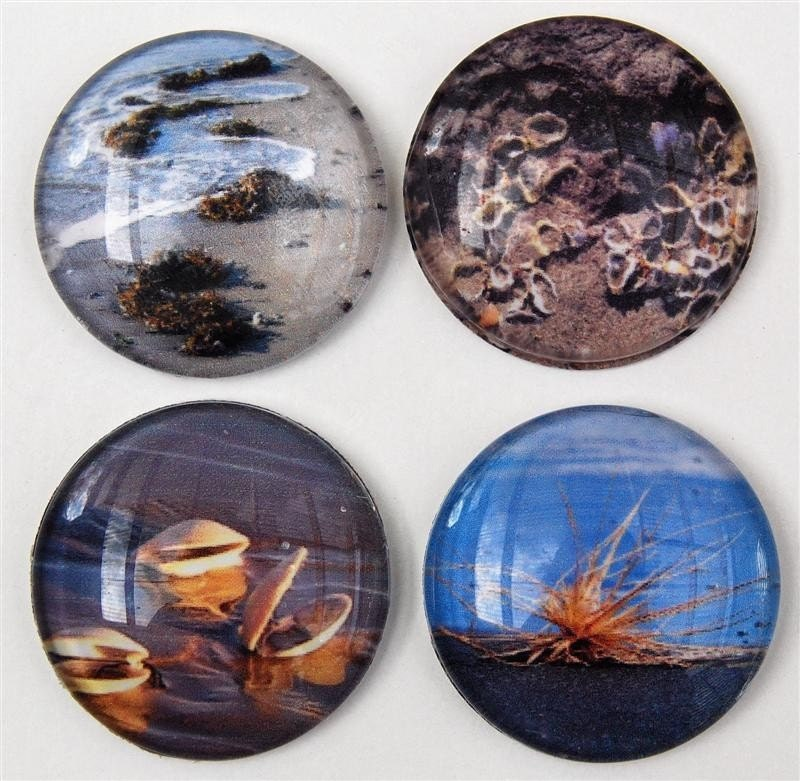 Round domed glass magnets with beach scenery photos