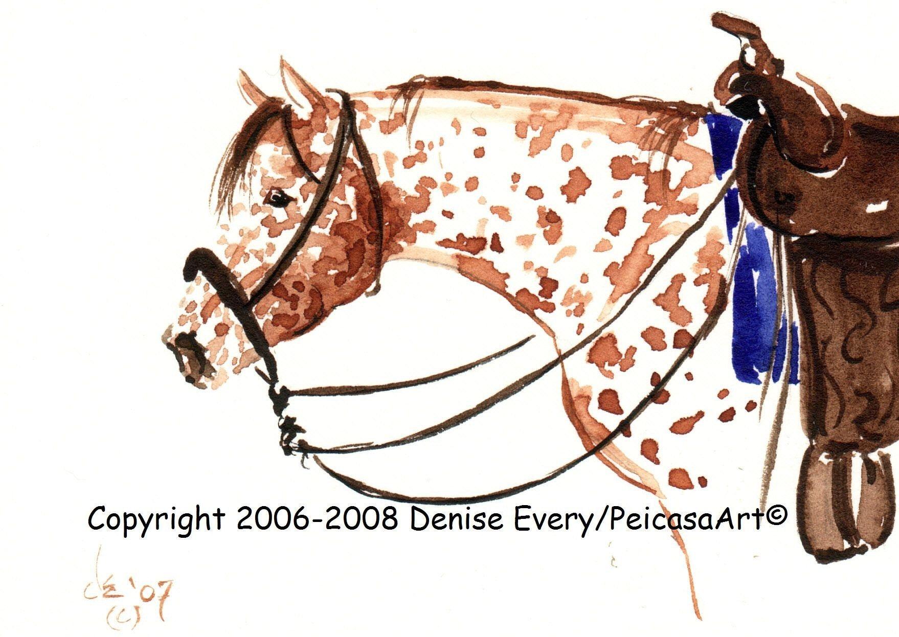 4x6 Print  Sorrel Leopard Appaloosa Horse in Western Tack Bosal Hackamore Equine Art