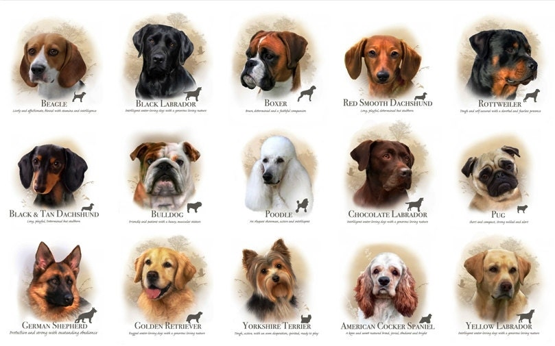 Dog Breed or Cat Breed Cotton Fabric Panels by by CarolinaCottonCo Y Dog Names