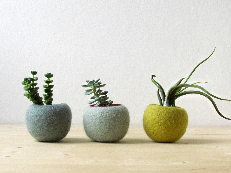 Felt succulent planter / felted pod / Succulent terrarium / Green felt vases / felt bowl / winter decor - theYarnKitchen