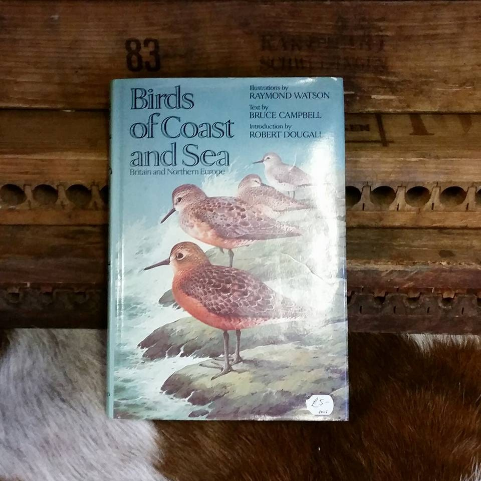Sea bird book  1977 Birds of Coast  Sea hardback with colour illustrations