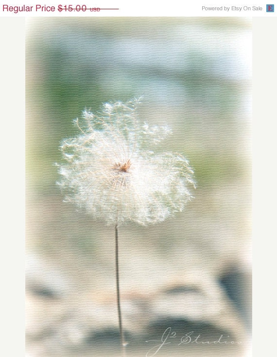 FALL SALE - Dandelion Dreams, Flower Art Photography Print, Fluffy Pastel Dreamy Girl Mint Green - j2studiosphotography