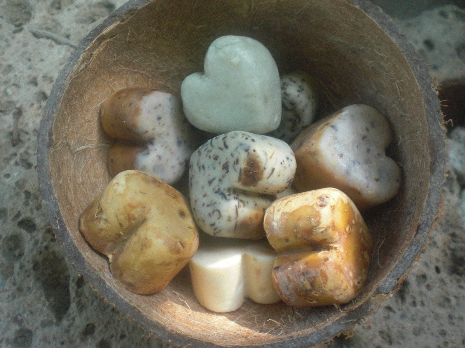 SOAP set in a coconut shell (10 pieces)