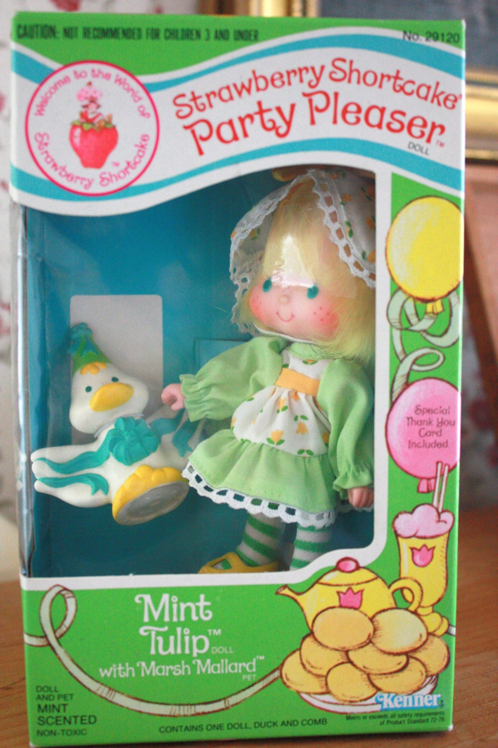 Mint Tulip Party Pleaser Strawberry Shortcake 1983 by ...