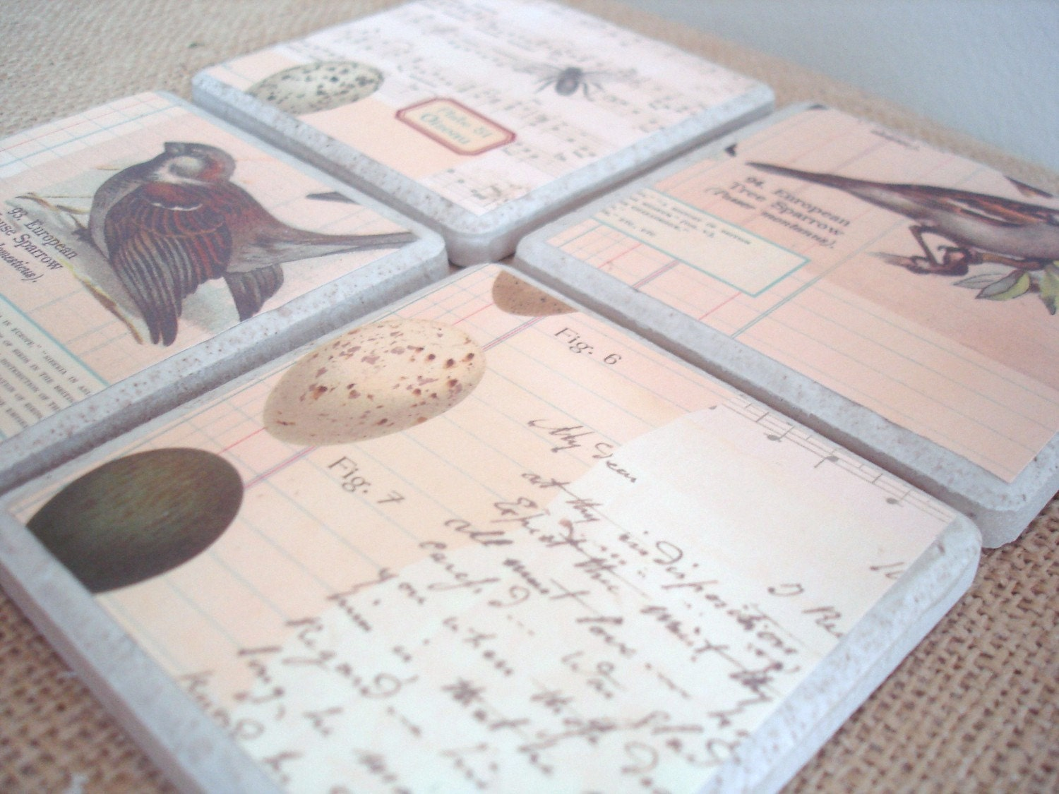 Bird and Egg Coasters-A Vintage Inspired Set by burlap and blue