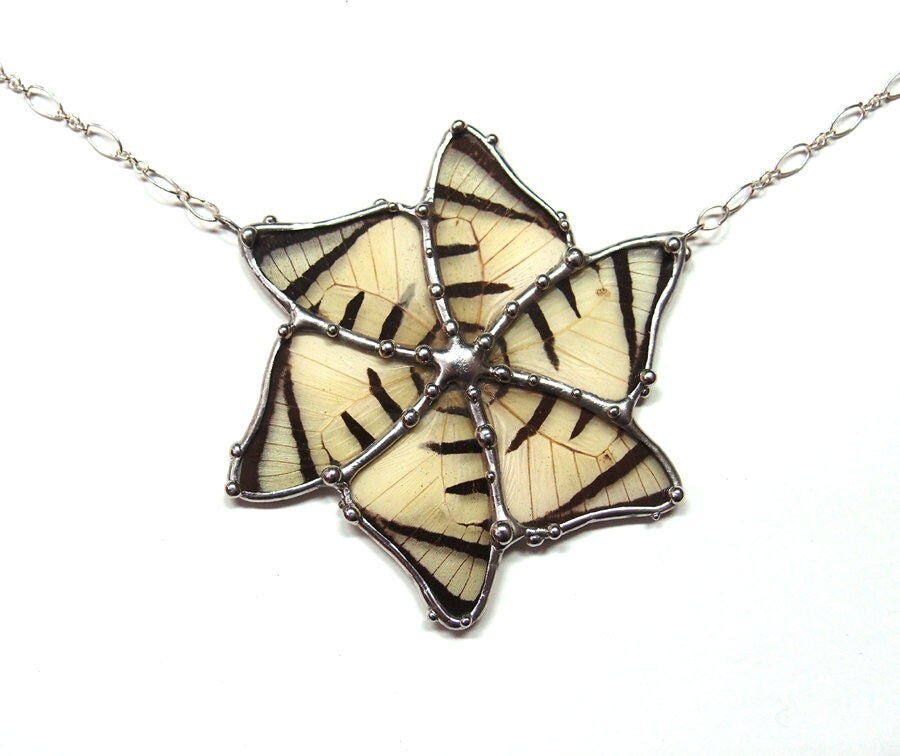 Real Butterfly Wing Statement Necklace Flower Power by neile