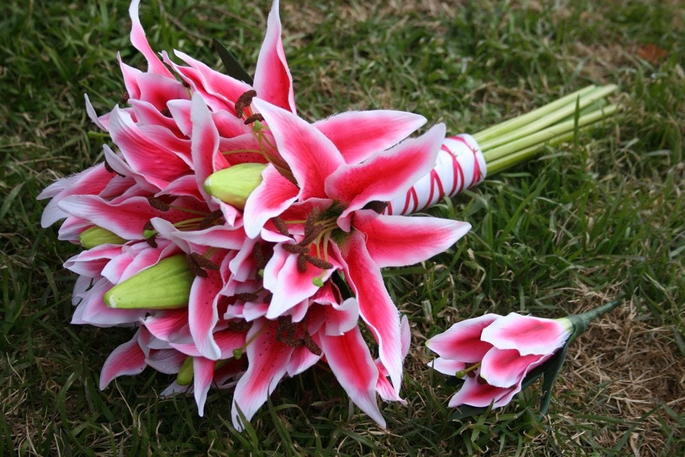 Tiger Lily Wedding Bouquet Pink Tiger Lily Bouquet And
