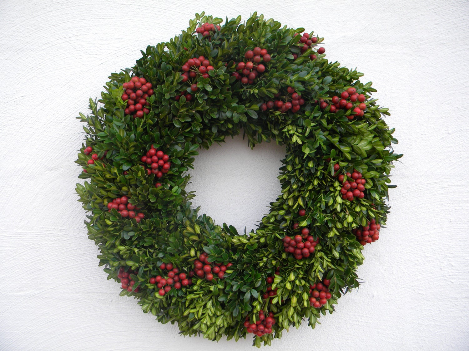 Fresh Boxwood Holly Wreath
