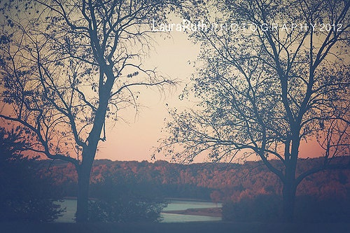 Landscape Photography Tree photo Vintage Inspired by ...