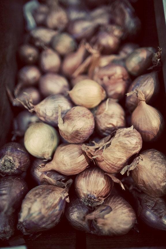 Paris Onions