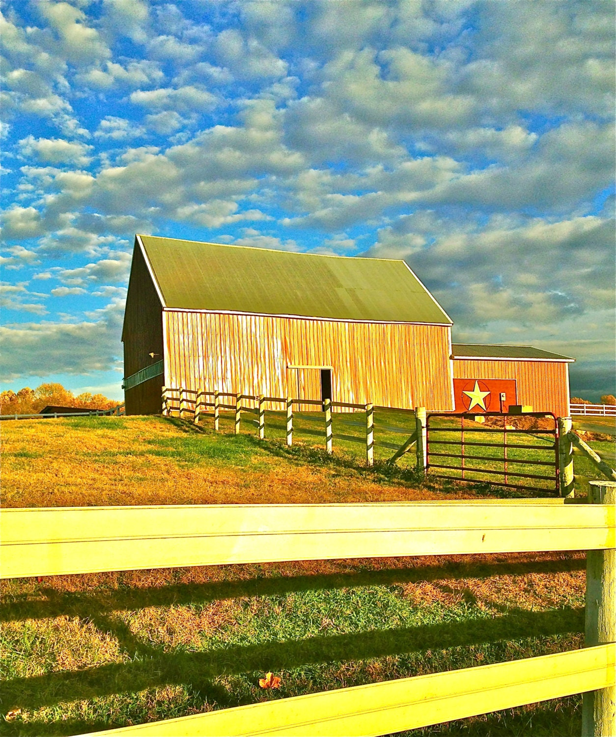 Barn on a Sunny Day Poster Print - LindaKMcDowell