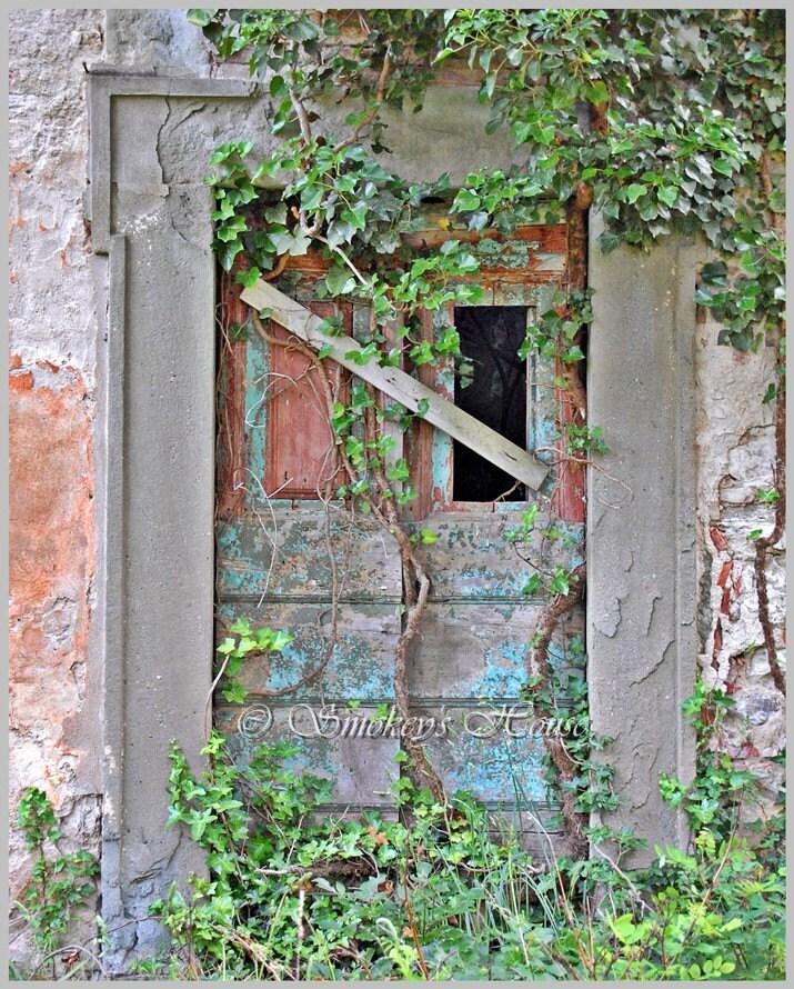 Doorway, Pontassieve, Italy - Ivy Door 8x10