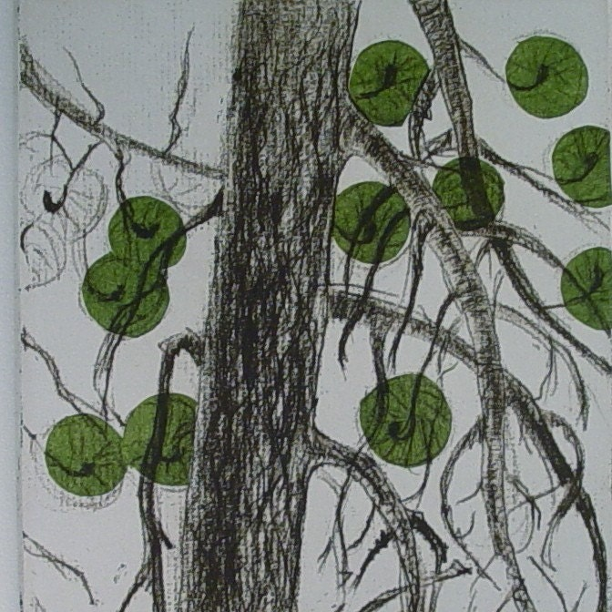 ponderosa pine  etching
