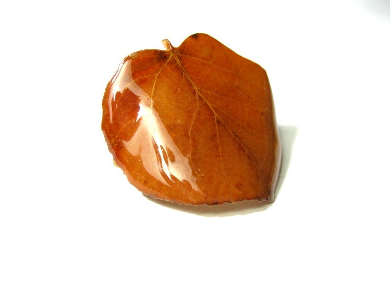 Vintage Aspen Leaf Brooch, Autumn