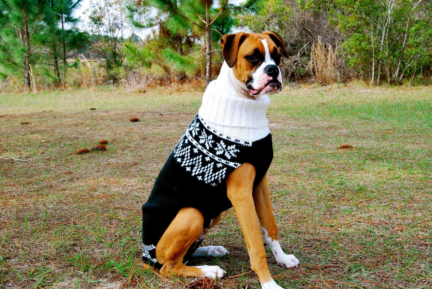 Free Crochet Pattern For Extra Large Dog Sweater : Popular items for large dog sweaters on Etsy