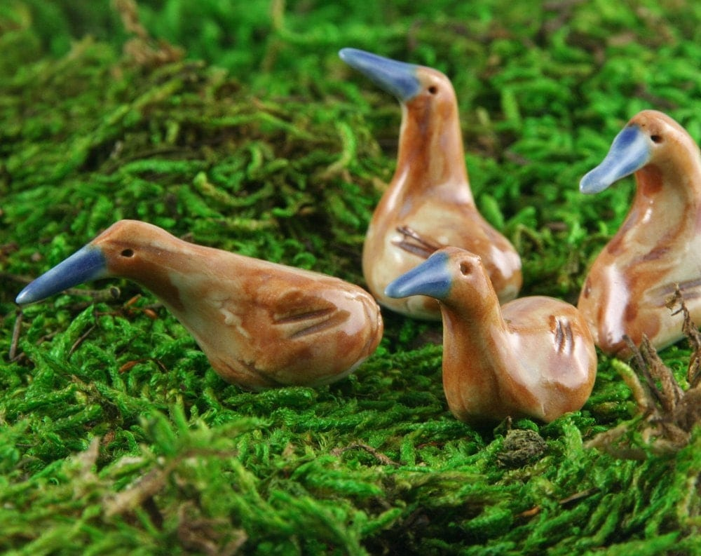 Miniature Kiwi Birds - Set of Four - Studio Selected