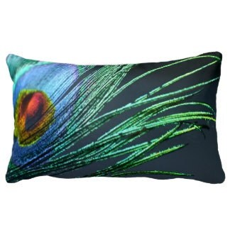 Pillow, Peacock Feather, Feather, Green, Emerald, Blue, For her,  Rainbow, Home Decor, - 8daysOfTreasures