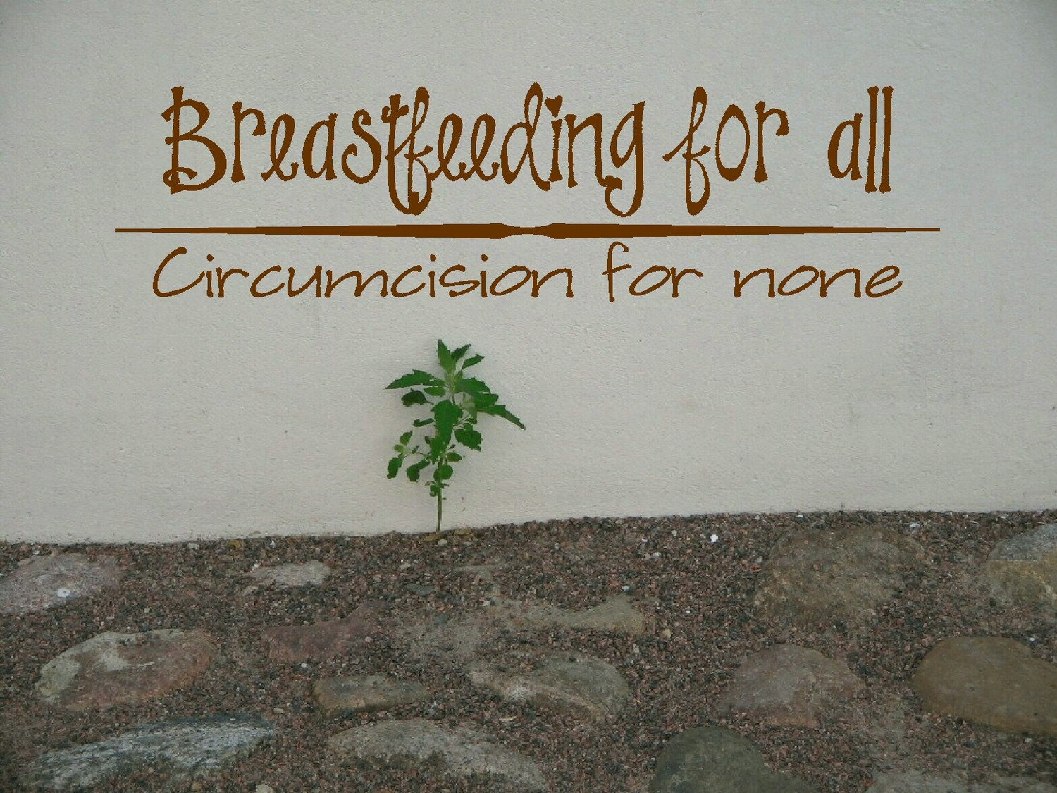 Breastfeeding for all -- Circumcision for none decal