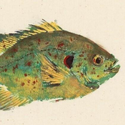 Shellcracker gyotaku fish rubbing limited edition by for Shell cracker fish