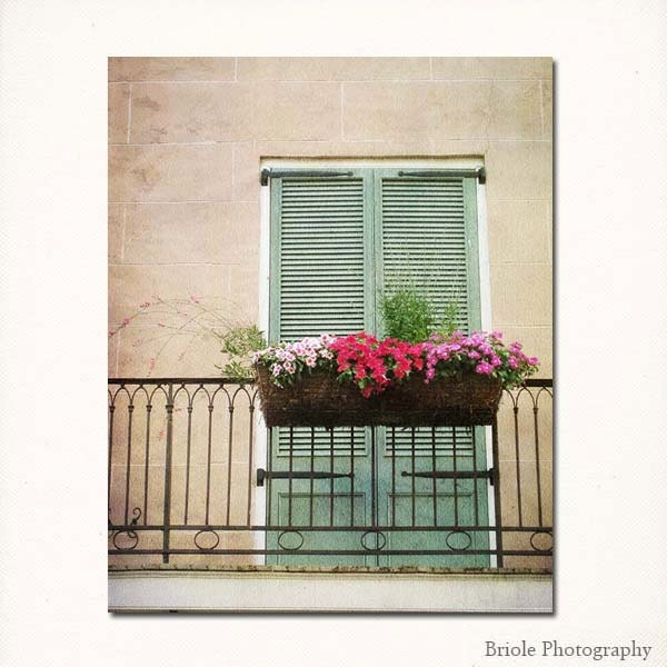 New Orleans Wall Art Come To My Window Fine Art By Briole