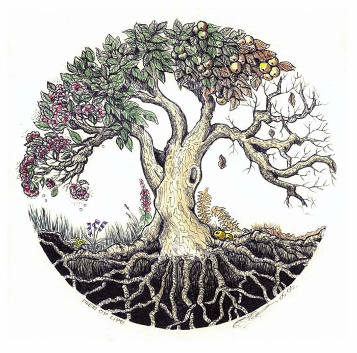 Unusual image with regard to tree of life printable