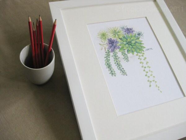 Succulents - Set of Four 8'x11.5' Fine Art Prints