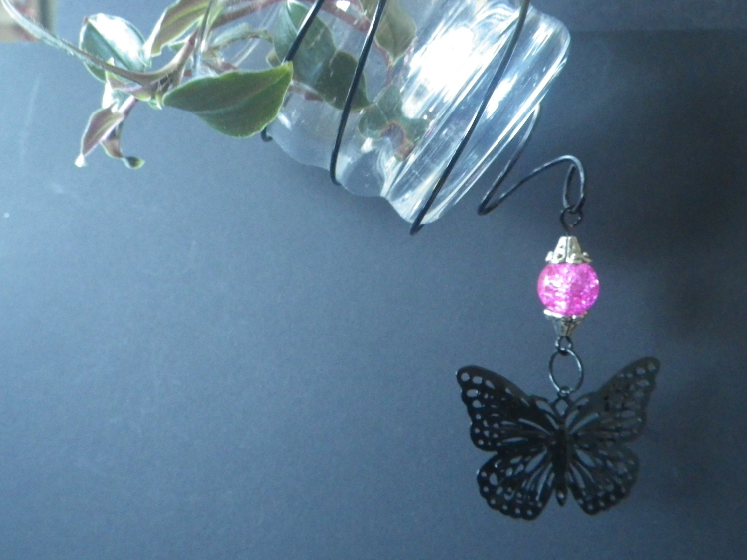 Plant Cutting Rooting Vase- Black Butterfly- Hot Pink- Window or Mirror Hanger- May Day- Mother's Day- Birthday- Gift for Her- CassieVision - CassieVision